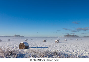 Straw Fodder Bales in Winter with fog on the horizon