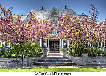 Apple Blossoms and Mansion - A mansion sits behind two apple...
