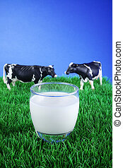 plastic cow on grass with milk