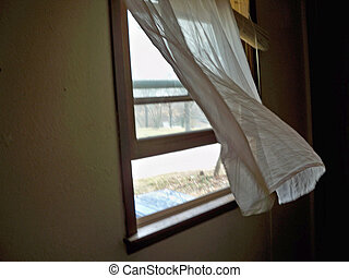 Breezy Spring Morning - Sheer white curtain blowing in the...