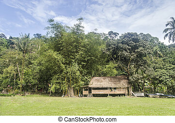 Traditional wooden house beside bamboo tree under the blue...