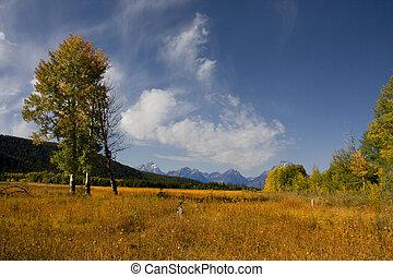 Grand Tetons - View of Mt Moran in Grand Teton National Park