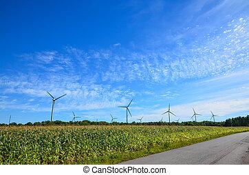 Winfarm - Windmills by a corn field att blue sky on the...