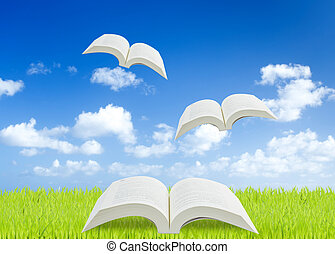 Open book on green grass with blue sky