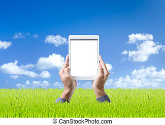 Man hand holding digital tablet on green grass and blue sky background