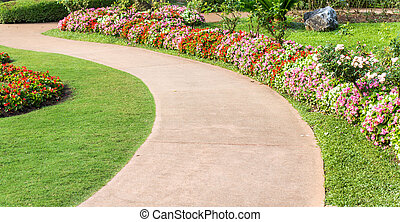 Cement pathway in flowers garden