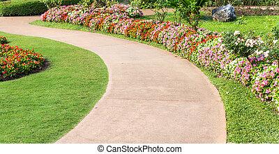 Cement pathway in flowers garden