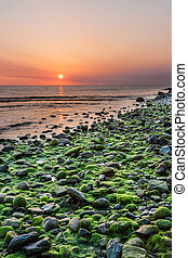 Mossy rocks and sunrise at Bray Head - Mossy rocks and...