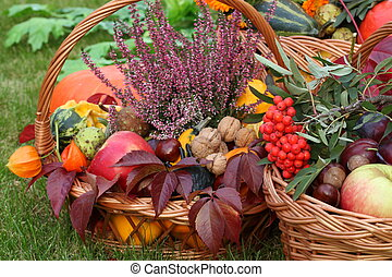 Autumn decorations - Colorful autumn decorations in wicker...