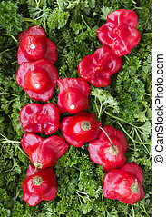 Letter K Pepper and parsley