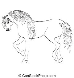 Image Of An Horse