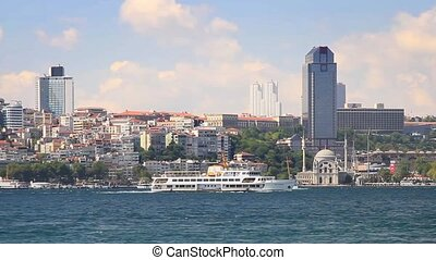 Besiktas region from the waterside - Vaide Sultan Mosque and...