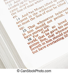 Holy doctrine - Selective focus of verses in open Holy Bible...