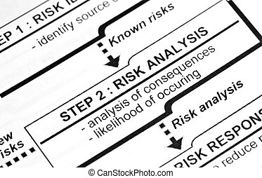 risk analysis - This is a image of edited text.