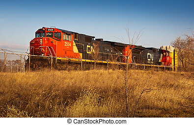 CN Railroad - International railroading shipping to and from...
