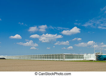 greenhouse exterior - large greenhouse in an agricultural...