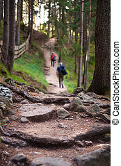 Two hikers on a mountain trail - Two hikers walking on a...