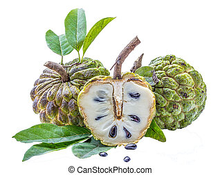 Custard apple tropical fruit isolated on white background