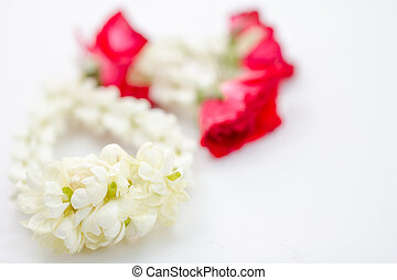 Jasmine garland - Close-up of Jasmine garland isolated on...