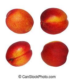 Set nectarine fruit isolated