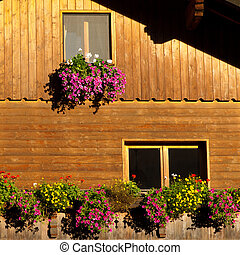 Colorful Flower Arragement on the windows of an Alpine Cabin...