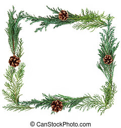 Winter Greenery Border - Cedar leaf border with pine cones...