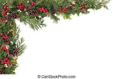 navidad, floral, frontera
