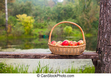 Big straw basket with red and yellow apples on a bench near the lake