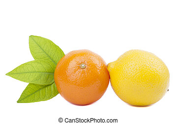 Tangerine and lemon on a white background