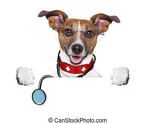 medical doctor dog behind a blank banner
