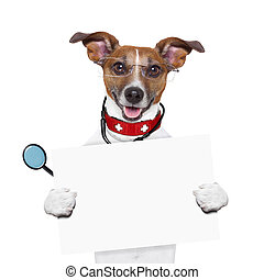 medical doctor dog holding a blank banner