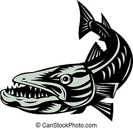 Barracuda Top View - Illustration of open mouthed barracuda...