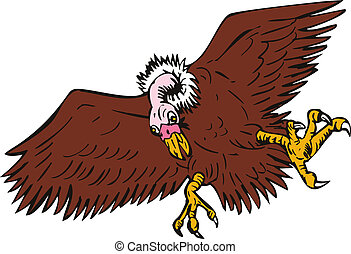 Vulture Buzzard - Illustration of a vulture buzzard on...
