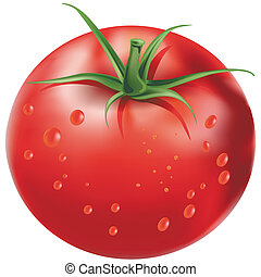 Ripe juicy red tomato