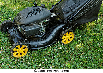 lawnmower - Black lawnmower in the garden lawn the grass...