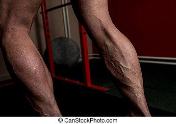 Muscular Man Calves - Muscular Bodybuilder's Legs Shot In A...