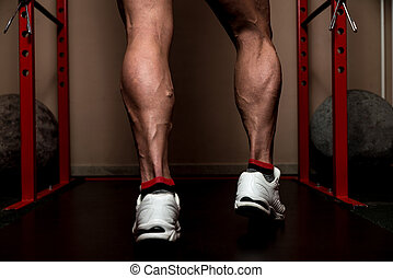 Look At My Calves - Muscular Bodybuilders Legs Shot In A Gym...