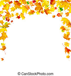 Autumn Leaves Frame - Falling autumn maple leaves frame...
