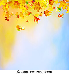 Falling Leaves - Autumn background with falling maple leaves...
