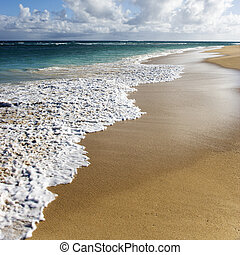 浜,  maui, ハワイ \