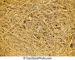 Dry straw, Background or Texture