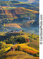 Rural houses and autumnal vineyards in Piedmont, Italy. -...