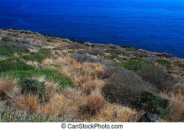 Pantelleria, Sicily - View of coast in Pantelleria in Sicily