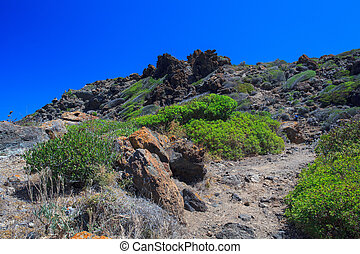 Pantelleria - View of tipycal countryside in Pantelleria...