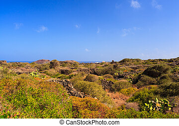 Pantelleria, Sicily - View of tipycal countryside in...
