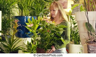 woman working in flower shop arrang - young hispanic woman...