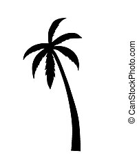 Palm silhouette.  - Palm silhouette - vector illustration.