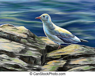 Seagull resting on some rocks near to the sea. Digital...