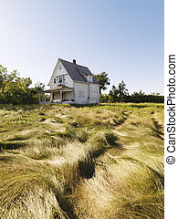 Abandoned house. - Abandoned house in field.