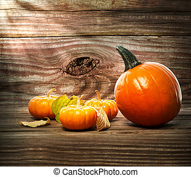 Squashes and pumpkins on wooden table background